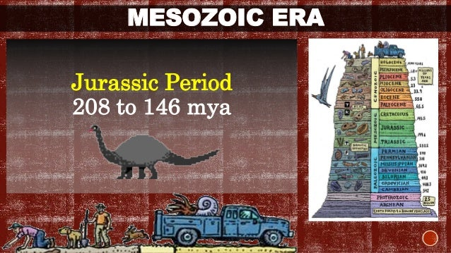 MESOZOIC ERA  Cretaceous Period  146 to 65 mya