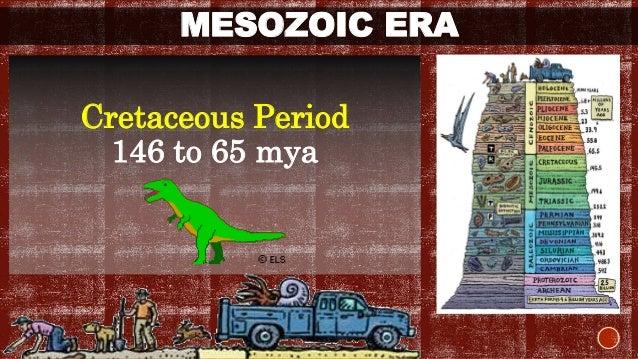 PHANEROZOIC EON  Cenozoic Era:  The most recent Era of the three major  subdivisions of animal history.  Also called as th...