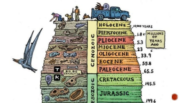The Geologic Time Scale (Chronological Order)