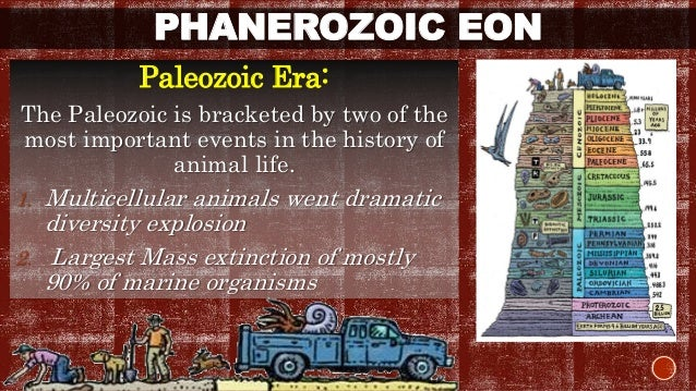 PHANEROZOIC EON  Paleozoic Era:  The Paleozoic is bracketed by two of the  most important events in the history of  animal...
