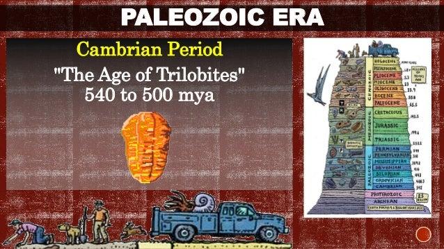 """PALEOZOIC ERA  Cambrian Period  """"The Age of Trilobites""""  540 to 500 mya"""
