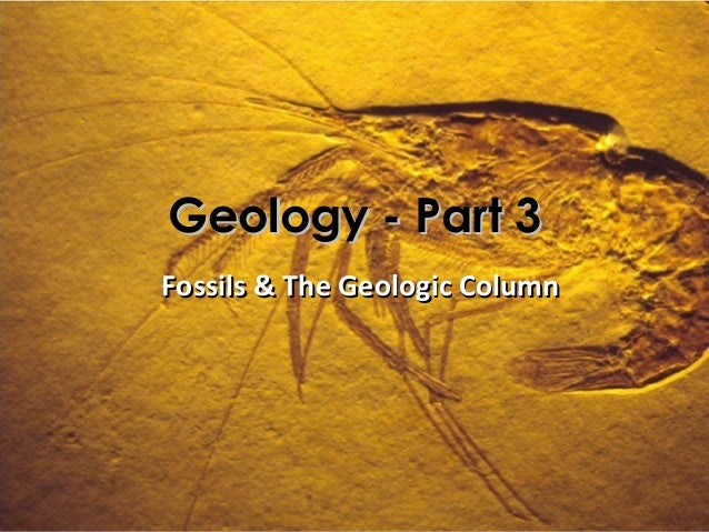 Geology - Part 3Fossils & The Geologic Column