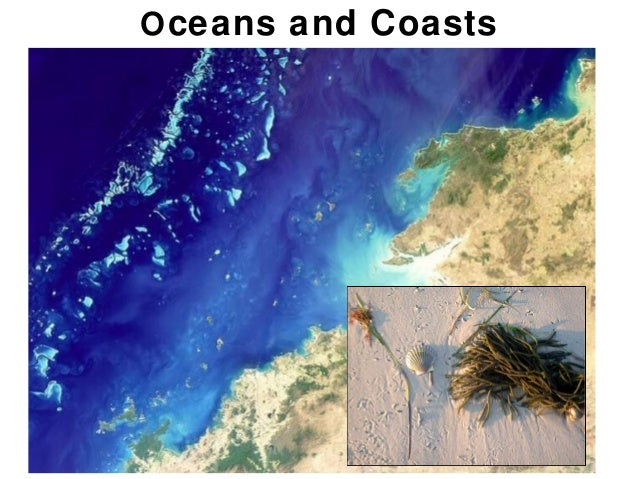 O ceans and Coasts                     Chapter 18