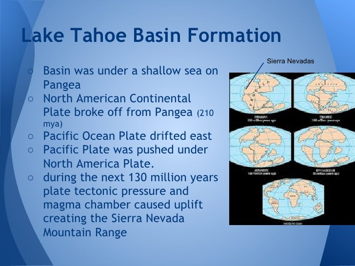 The endangered ecosystem of lake tahoe basin