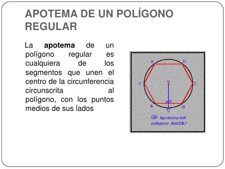 APOTEMA DE UN POLÍGONO REGULAR<br />La apotema de un polígono regular es cualquiera de los segmentos que unen el centro de...