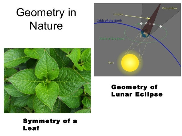 geometry in daily life Mathematics expresses itself everywhere, in almost every facet of life - in nature all around us  as well as in everyday life.