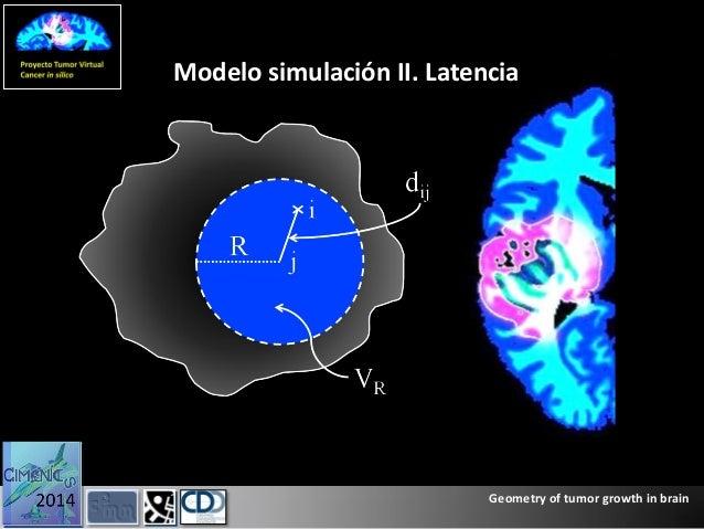 brain tumor and geometry Cha s 2006 update on brain tumor imaging: from anatomy to  mandelbrot b b  1983 the fractal geometry of nature (new york: w h freeman.