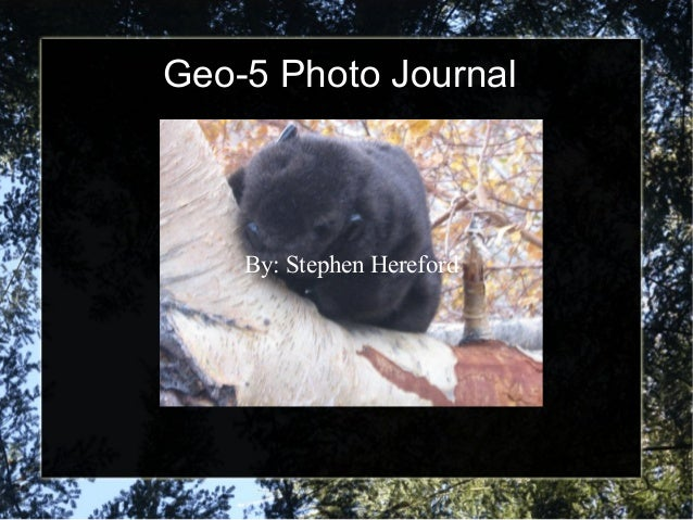 Geo-5 Photo Journal By: Stephen Hereford By: Stephen Hereford