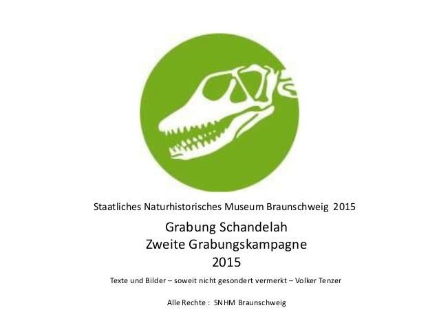 Staatliches Naturhistorisches Museum Braunschweig 2015 Grabung Schandelah Zweite Grabungskampagne 2015 Alle Rechte : SNHM ...