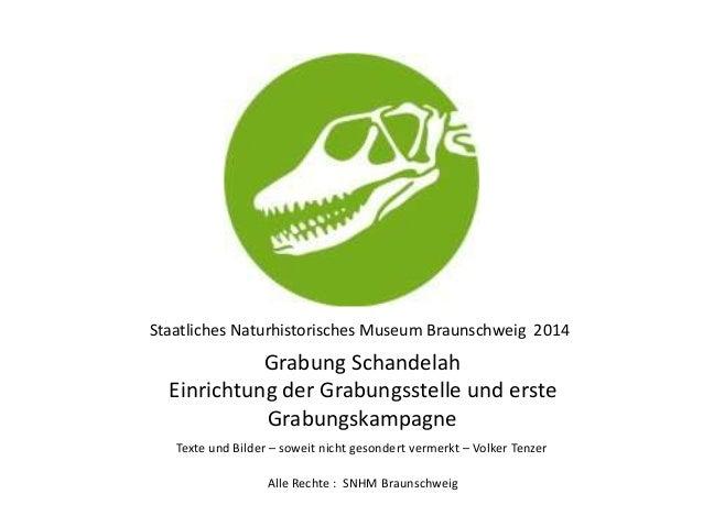 Staatliches Naturhistorisches Museum Braunschweig 2014 Grabung Schandelah Einrichtung der Grabungsstelle und erste Grabung...