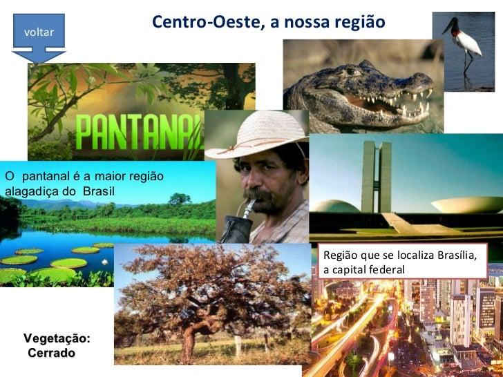 Centro-Oeste, a nossa região voltar Região que se localiza Brasília, a capital federal Vegetação: Cerrado O  pantanal é a ...