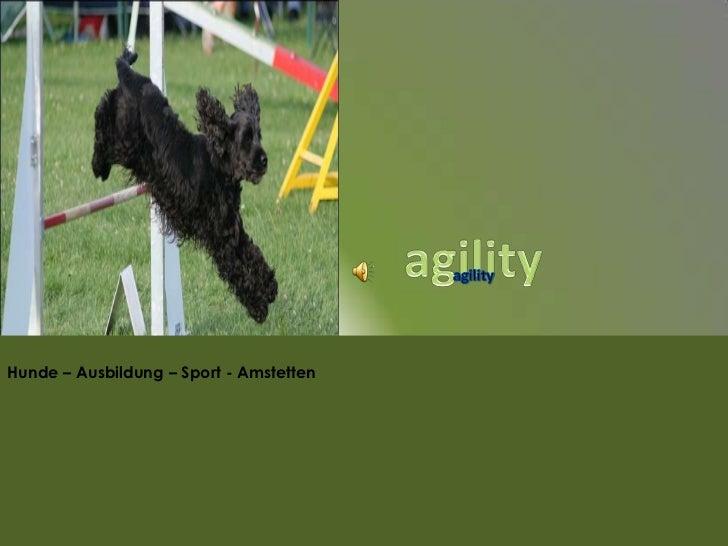 Hunde – Ausbildung – Sport - Amstetten