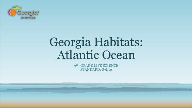 Georgia Habitats: Atlantic Ocean 3RD GRADE LIFE SCIENCE STANDARD: S3L1A