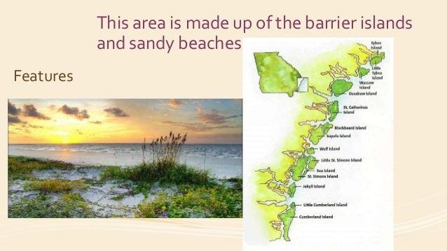 Georgia Habitats The Coast