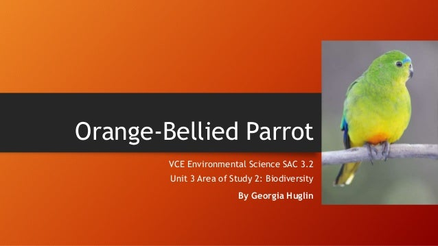 Orange-Bellied Parrot VCE Environmental Science SAC 3.2 Unit 3 Area of Study 2: Biodiversity By Georgia Huglin