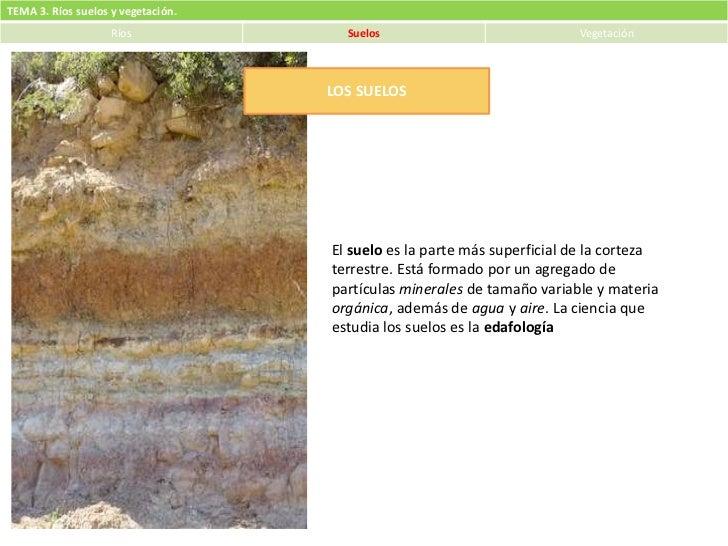 TEMA 3. Ríos suelos y vegetación.                    Ríos              Suelos                             Vegetación      ...