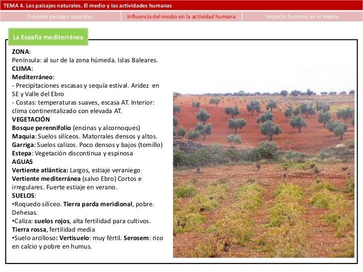 TEMA 4. Los paisajes naturales. El medio y las actividades humanas         Grandes paisajes naturales             Influenc...