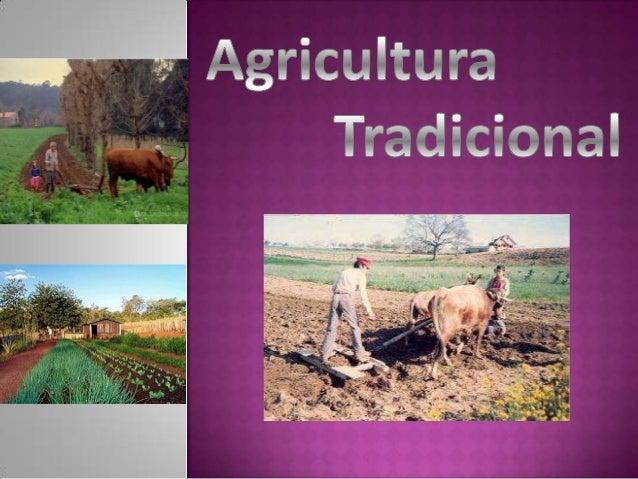 A agricultura tradicional é um tipode agricultura praticada numa pequena propriedade, ondese cultivam vários produtos.Este...