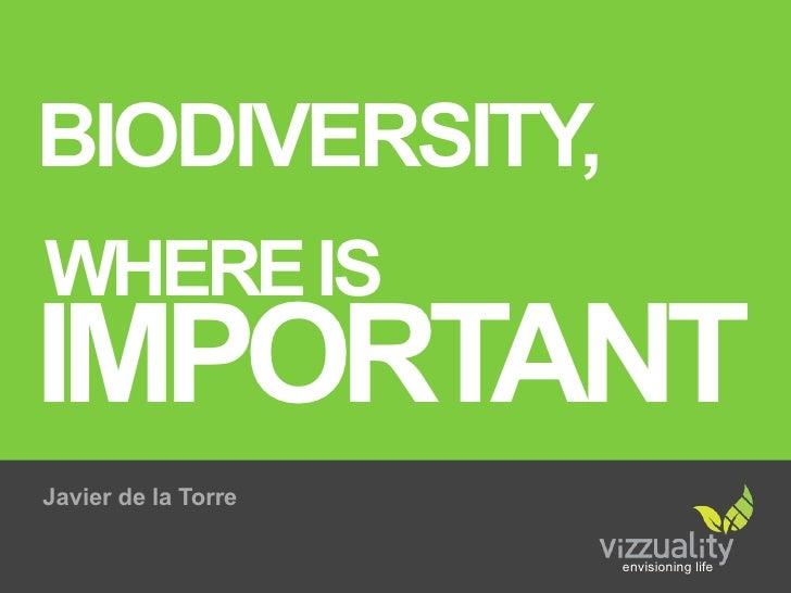 BIODIVERSITY, WHERE IS IMPORTANT Javier de la Torre                       envisioning life