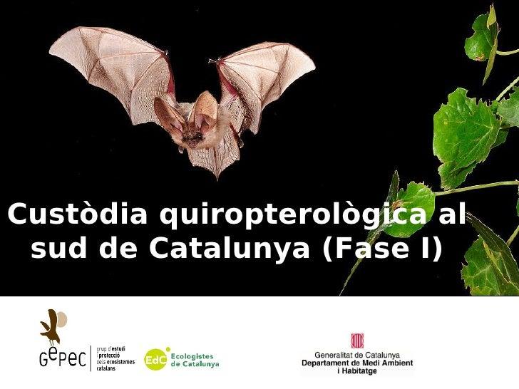 Custòdia quiropterològica al sud de Catalunya (Fase I)