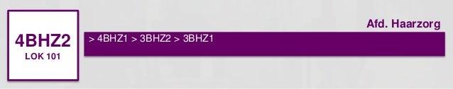 4BHZ2  LOK 101  > 4BHZ1 > 3BHZ2 > 3BHZ1  Afd. Haarzorg