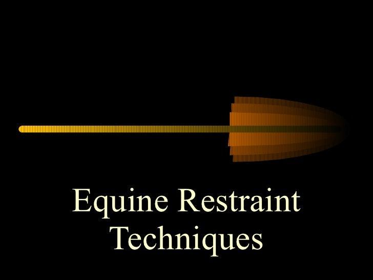 Equine Restraint Techniques