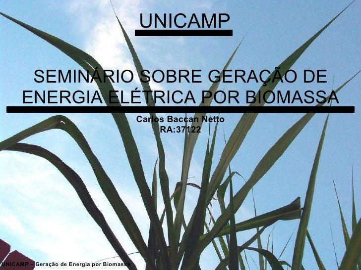 SEMINÁRIO SOBRE GERAÇÃO DE ENERGIA ELÉTRICA POR BIOMASSA UNICAMP UNICAMP – Geração de Energia por Biomassa Carlos Baccan N...