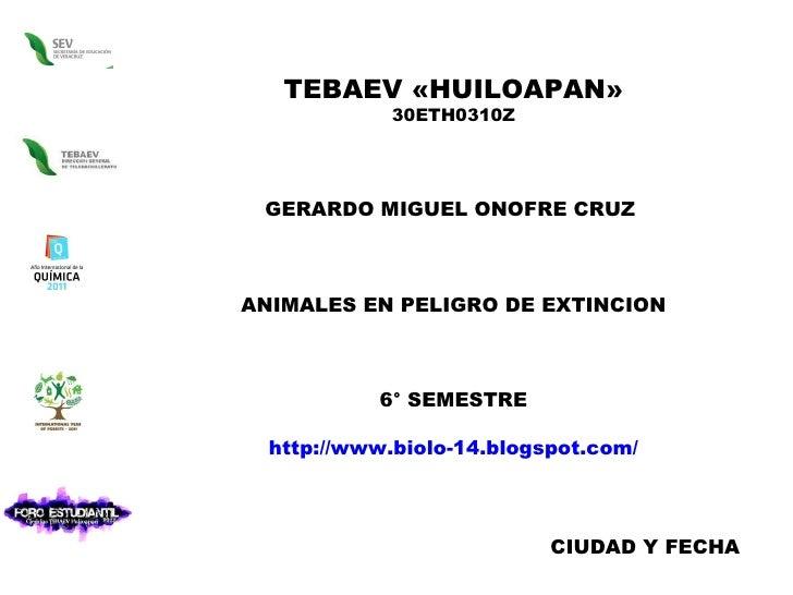 TEBAEV «HUILOAPAN» 30ETH0310Z GERARDO MIGUEL ONOFRE CRUZ  ANIMALES EN PELIGRO DE EXTINCION 6° SEMESTRE http://www.biolo-14...