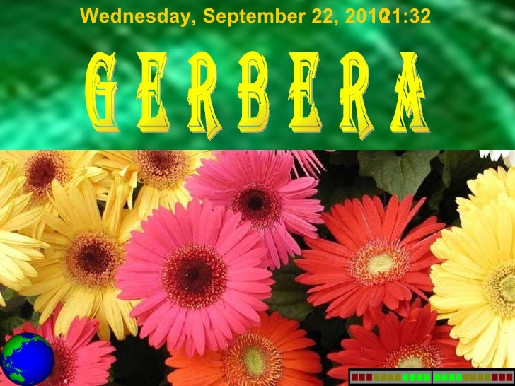 g e r b e r a Wednesday, September 22, 2010 21:31