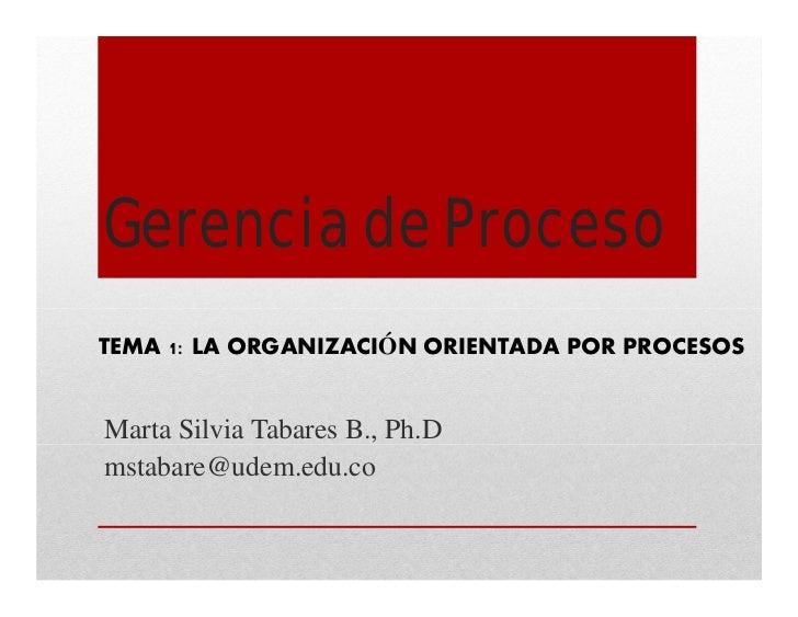 Gerencia de ProcesoTEMA 1: LA ORGANIZACIÓN ORIENTADA POR PROCESOSMarta Silvia Tabares B., Ph.Dmstabare@udem.edu.co