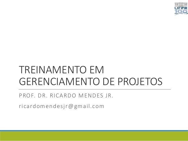 TREINAMENTO EM GERENCIAMENTO DE PROJETOS PROF. DR. RICARDO MENDES JR. ricardomendesjr@gmail.com