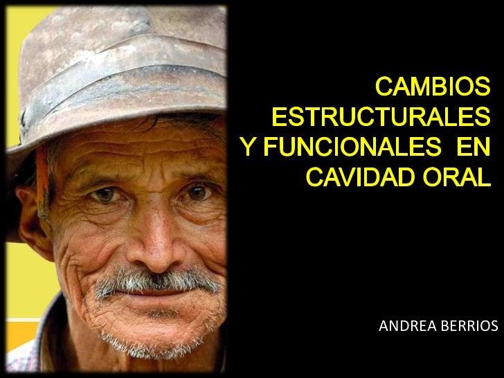 ANDREA BERRIOS