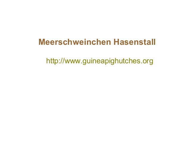 http://www.guineapighutches.org Meerschweinchen Hasenstall