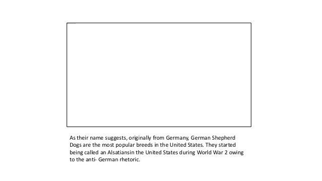 10+ Cutest Gifts for German Shepherd Lovers Slide 2
