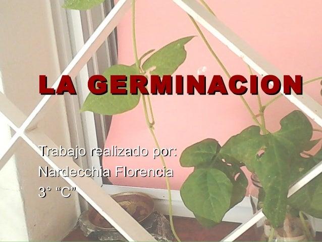 """LA GERMINACIONTrabajo realizado por:Nardecchia Florencia3° """"C"""""""