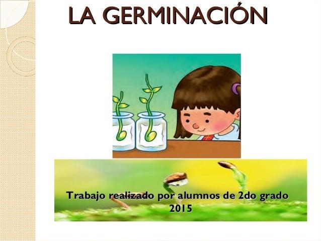 LA GERMINACIÓNLA GERMINACIÓN Trabajo realizado por alumnos de 2do gradoTrabajo realizado por alumnos de 2do grado 20152015