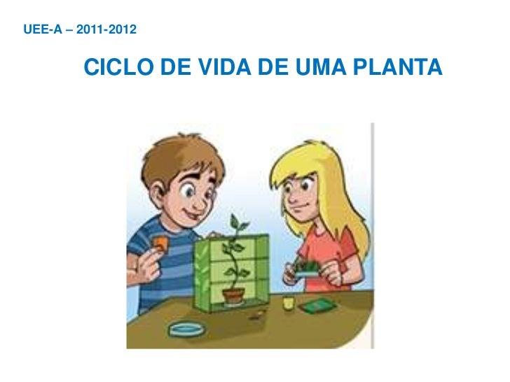 UEE-A – 2011-2012         CICLO DE VIDA DE UMA PLANTA
