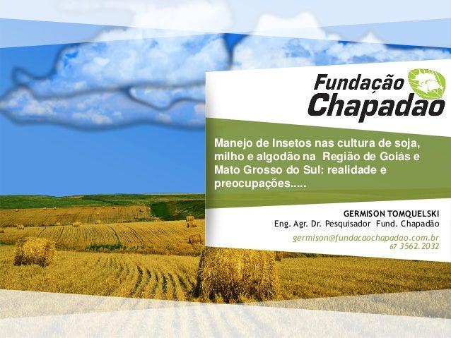 GERMISON TOMQUELSKI Eng. Agr. Dr. Pesquisador Fund. Chapadão germison@fundacaochapadao.com.br 67 3562.2032 Manejo de Inset...