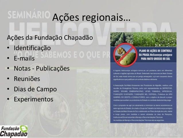Manejo de Insetos nas cultura de soja, milho e algodão na Região de Goiás e Mato Grosso do Sul: realidade e preocupações Slide 3