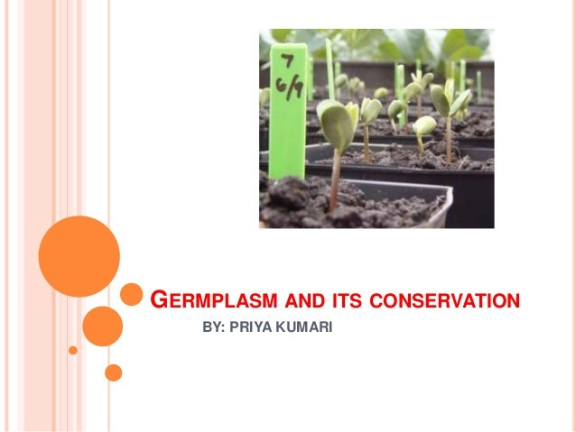 GERMPLASM AND ITS CONSERVATION BY: PRIYA KUMARI
