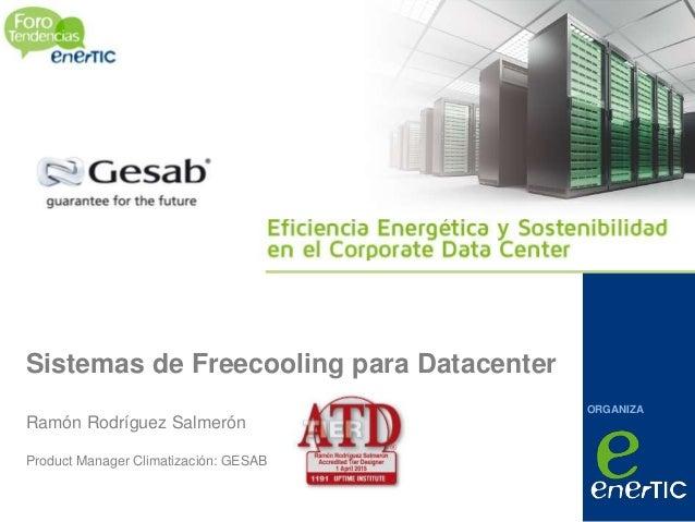 ORGANIZA Sistemas de Freecooling para Datacenter Ramón Rodríguez Salmerón Product Manager Climatización: GESAB