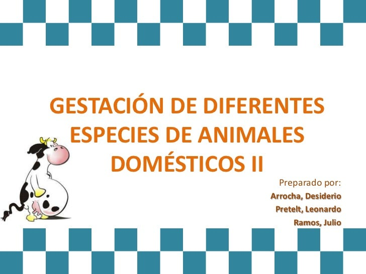 GESTACIÓN DE DIFERENTES ESPECIES DE ANIMALES     DOMÉSTICOS II                    Preparado por:                  Arrocha,...
