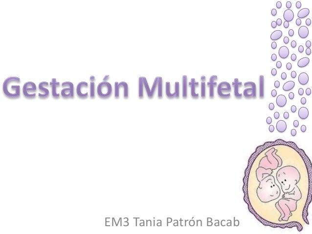 EM3 Tania Patrón Bacab