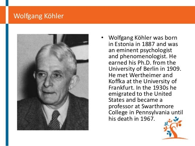wolfgang kohler Kohler was born in estonia, and earned is phd from the university of berlin in 1909 from 1910 to 1913 he collaborated with koffka and wertheimer on what would become the foundations for the.