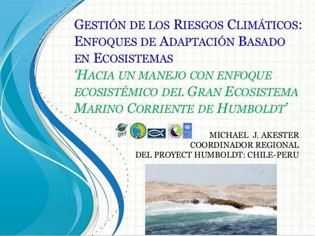 GESTIÓN DE LOS RIESGOS CLIMÁTICOS:ENFOQUES DE ADAPTACIÓN BASADOEN ECOSISTEMAS'HACIA UN MANEJO CON ENFOQUEECOSISTÉMICO DEL ...