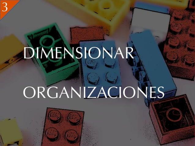 3    DIMENSIONAR    ORGANIZACIONES