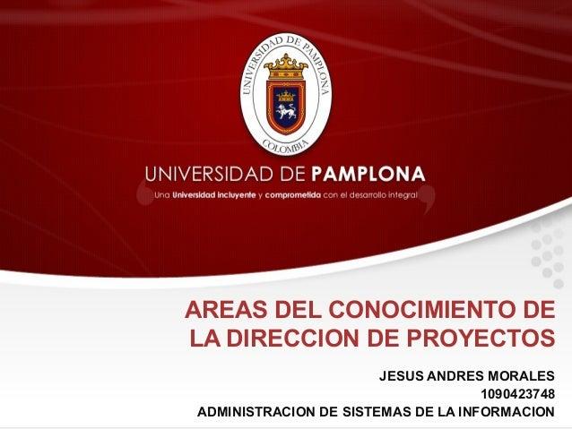AREAS DEL CONOCIMIENTO DE LA DIRECCION DE PROYECTOS JESUS ANDRES MORALES 1090423748 ADMINISTRACION DE SISTEMAS DE LA INFOR...