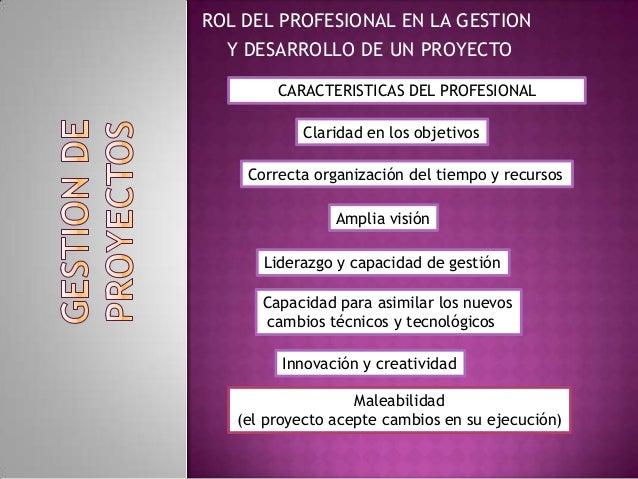 ROL DEL PROFESIONAL EN LA GESTIONY DESARROLLO DE UN PROYECTOCARACTERISTICAS DEL PROFESIONALClaridad en los objetivosCorrec...