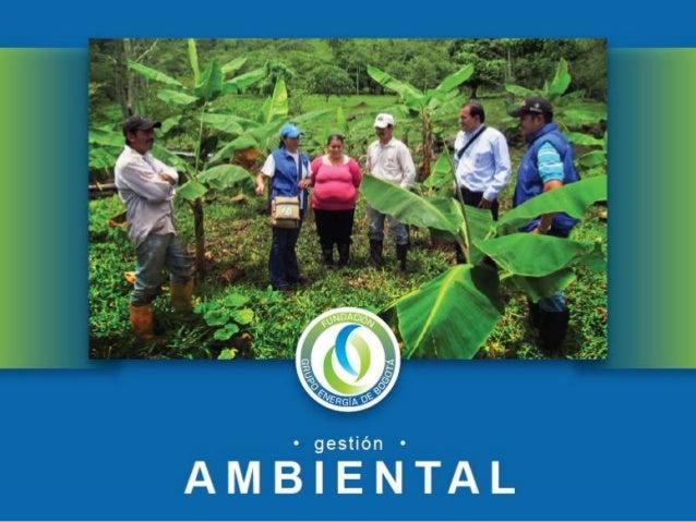 La Fundación Grupo Energía de Bogotá, en el marco de la PolíticaAmbiental Corporativa, adelanta proyectos tendientes a pro...