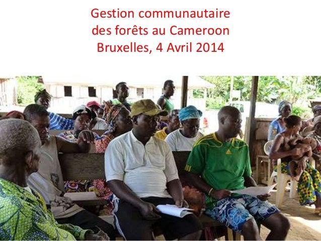 Gestion communautaire des forêts au Cameroon Bruxelles, 4 Avril 2014